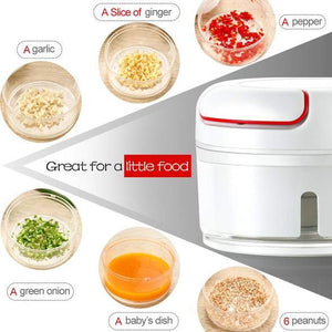 Electric Food Chopper Compact