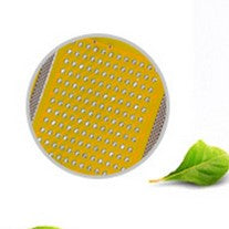 RF Radio Frequency Lattice Dot Matrix Beauty Head REFILL ~ 2 pieces (AU Stock)