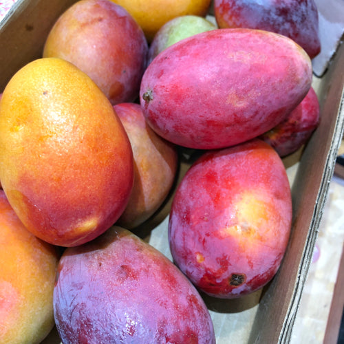 Fresh Mango (Each)