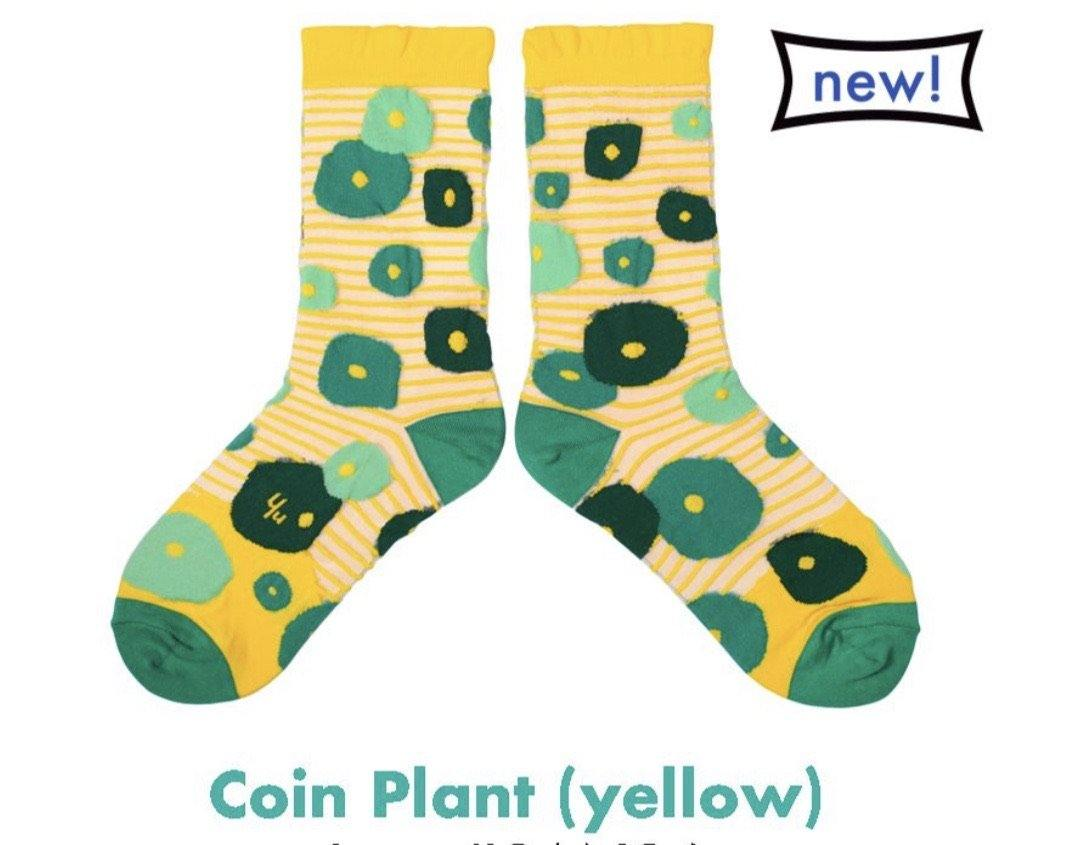 Coin Plant Yellow