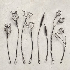 East of India - Wire Flowers - Large Bulrush Sprig