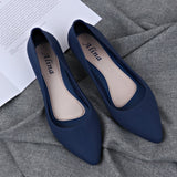 Pointed Shallow Wedges pumps women shoes 2019 spring autumn shoes women Elegant Casual Work Low heel Slip Casual ladies shoes