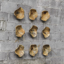 Load image into Gallery viewer, TAMARINE WOOD WALL DECOR, S/3