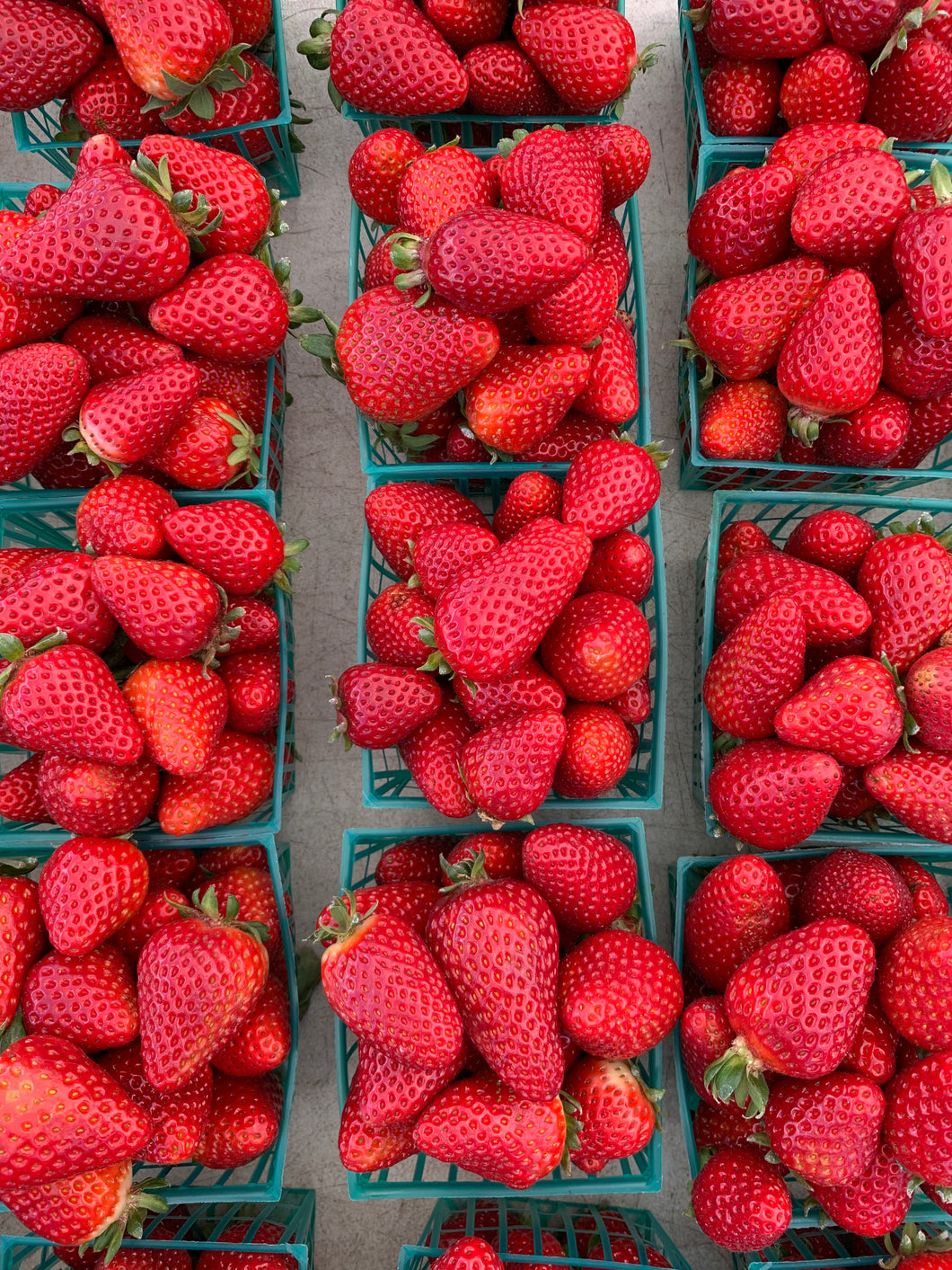 Strawberries, P and K Farms (1lb)