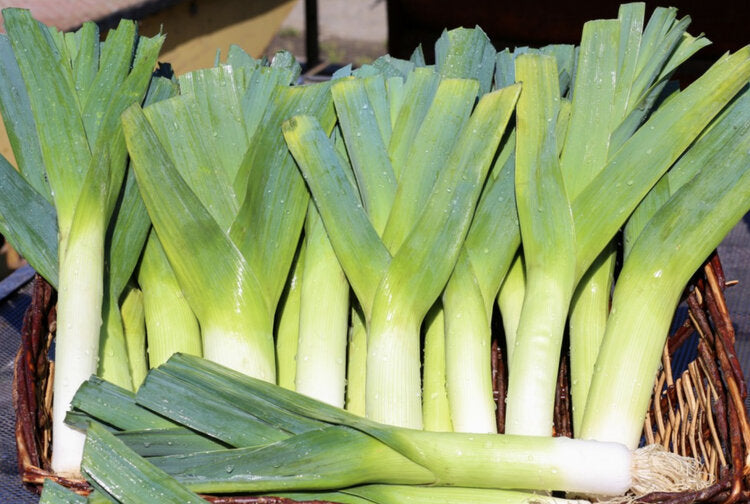 Leeks (2 per bunch)