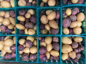 Potatoes, Baby Carola and Purple Viking (2 lb)