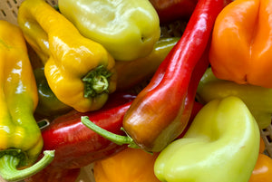 Peppers, Mixed Sweet (2 lb)