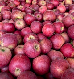Apples, WineCrisp (2 lb)