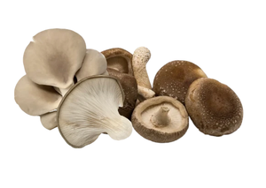 Mushrooms, Shiitake/Tree Oyster Combo (1 lb)