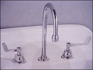 Gooseneck Faucet and Winged Handles