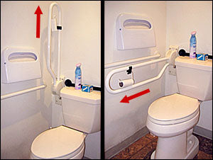 Fold Down Grab Bar with Optional Toilet Paper Holder