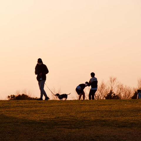 Walking the Dog with Kids