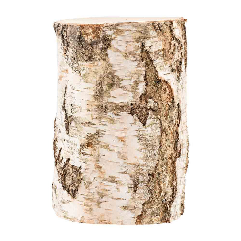 Birch Cremation Urn For Ashes