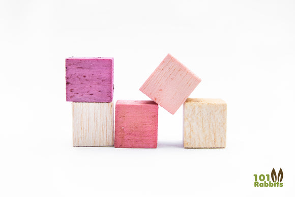 Fruit Flavored Balsa Blocks - 5 Pack
