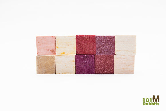 Fruit Flavored Balsa Blocks - 10 Pack