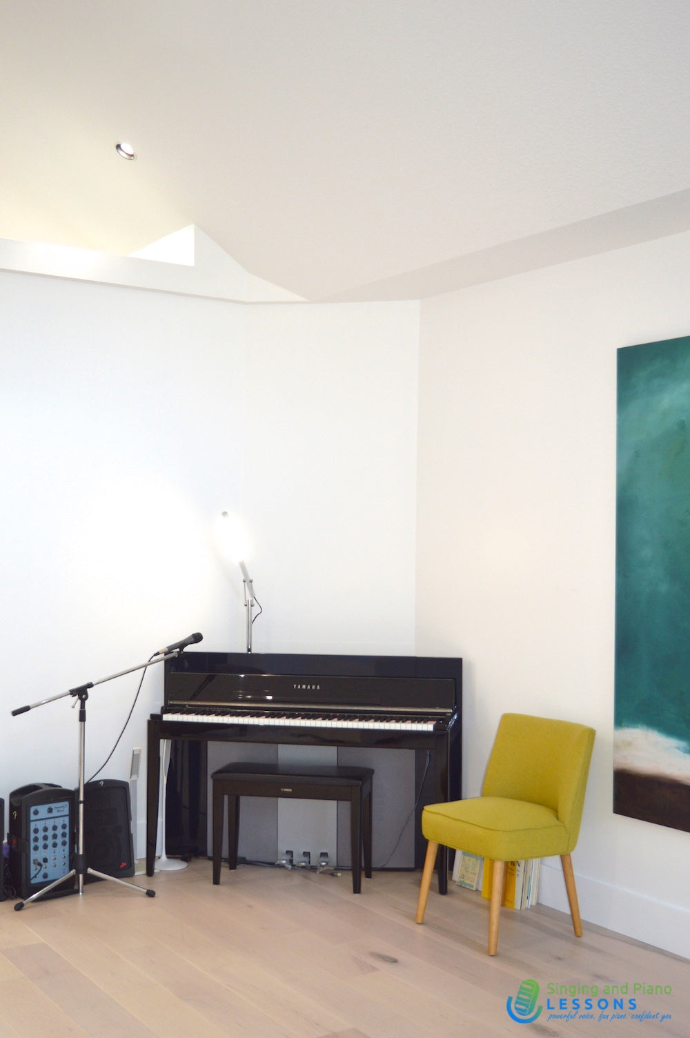 Private Singing Piano Lessons Online via Skype 2