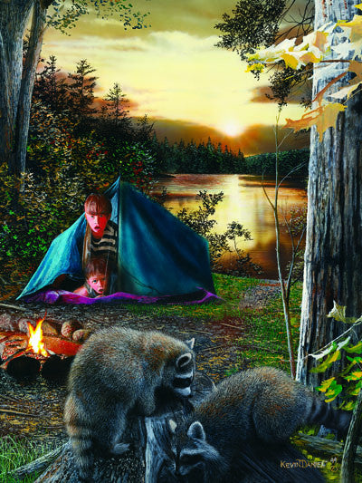 LED Canvas Art - Kids Raccoon - GrayGoose Products Limited