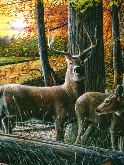 LED Canvas Art - Autumn Whitetails - GrayGoose Products Limited