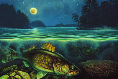 LED Canvas Art - Walleye - GrayGoose Products Limited