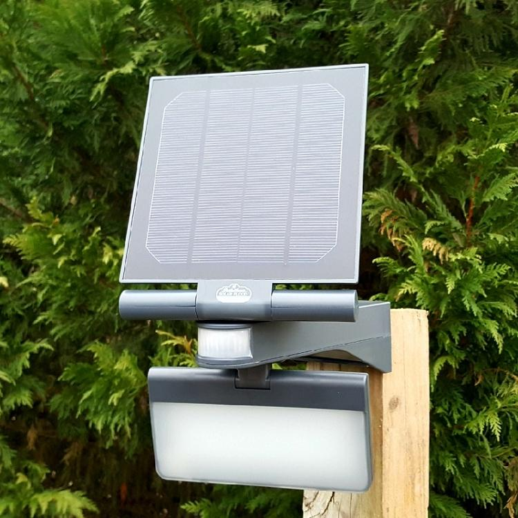 Pacific Accents 100 LED Solar Flood Light 600 Lumens