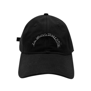 So Much Fun Dad Hat + Digital Album