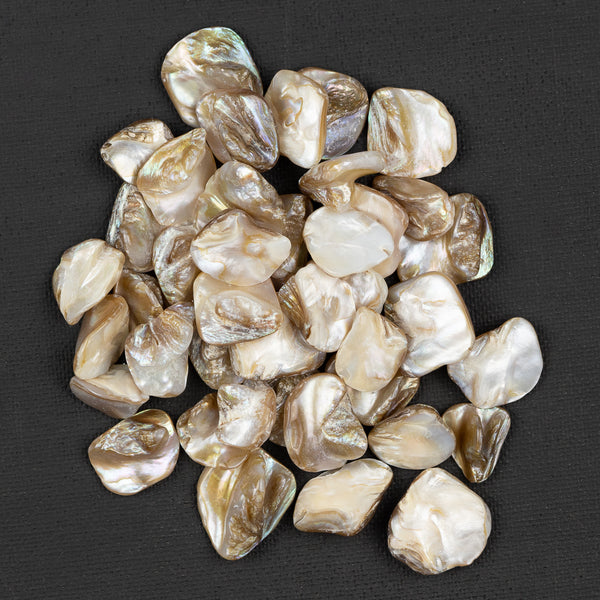 Pearl Shell Pieces 100g bag