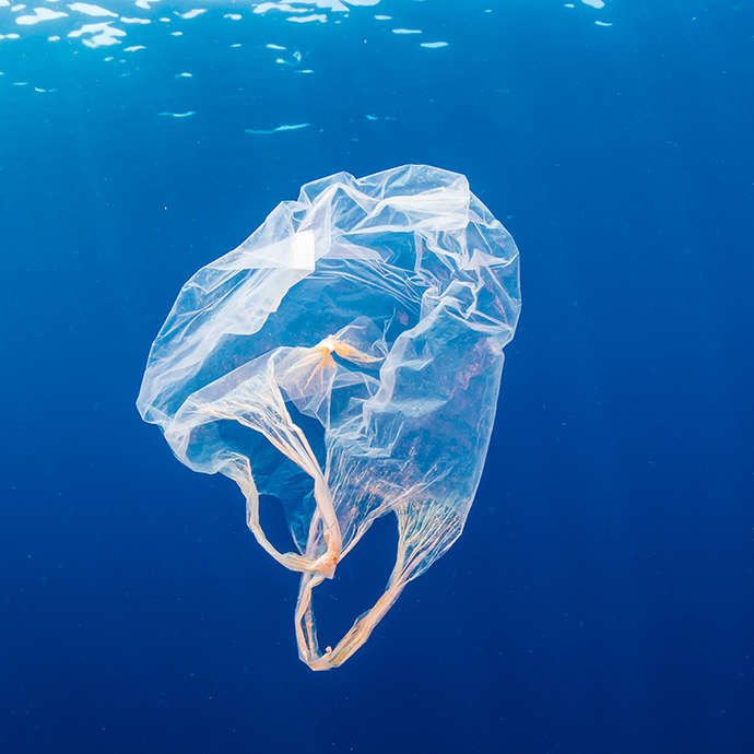 Ocean Plastic: The Tale of a $24 Trillion Trash Can