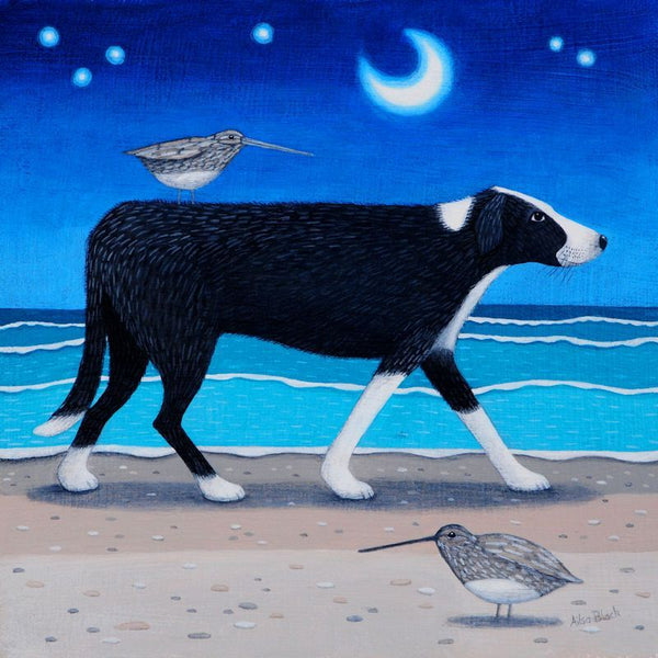 Collie Dog On Beach At Night Greetings Card - Ailsa Black