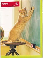 Cat Scratching A Blackboard Greetings Card