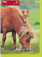 Horse And Foal Greetings Card