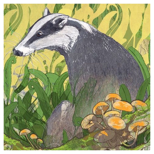 Badger Greetings Card - Shelly Perkins