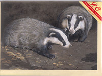 Badgers By Moonlight Greetings Card - Sonya Marshall