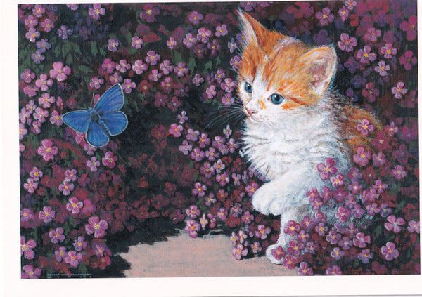Kitten With Blue Butterfly Happy Birthday Card