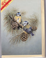 Blue Tit Birds Greetings Card - David Lawrence