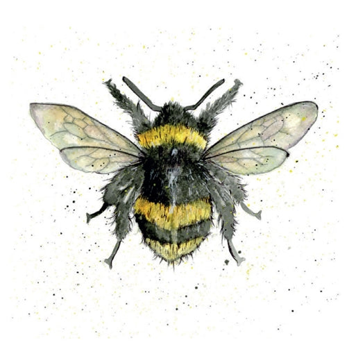 Bumble Bee Pencil Collection Greetings Card - Sarah Boddy