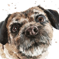 Buster The Border Terrier Puppy Dog Greetings Card - Louise Nisbet