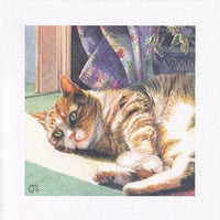 Cat Sunny Days Greetings Card - Chrissie Snelling