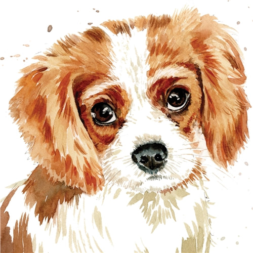 Cavalier King Charles Spaniel Puppy Dog Greetings Card - Louise Nisbet