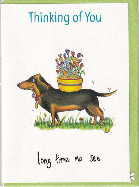 Thinking Of You Long Time No See Dachshund Greetings Card - The Compost Heap
