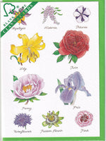 Flowers Greetings Card - Richard Partis For Clanna Cards