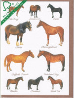 Horse Breeds Greetings Card - Richard Partis For Clanna Cards