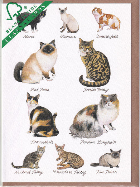 Cats Greetings Card - Richard Partis For Clanna Cards