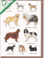 Dog Breeds Greetings Card - Richard Partis For Clanna Cards