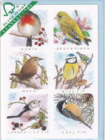 Garden Birds Greetings Card - Richard Partis For Clanna Cards