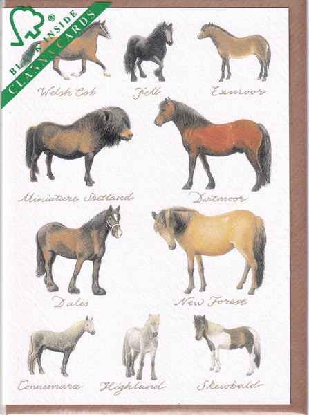 Ponies Pony Greetings Card - Richard Partis For Clanna Cards