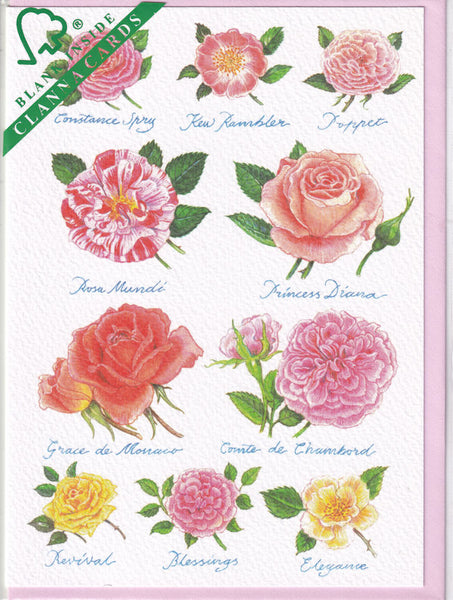 Rose Flowers Greetings Card - Richard Partis For Clanna Cards