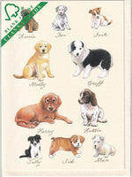 Puppies Puppy Dogs Greetings Card - Richard Partis For Clanna Cards