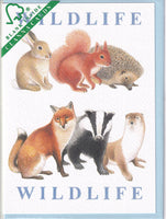 Wildlife Greetings Card - Richard Partis For Clanna Cards
