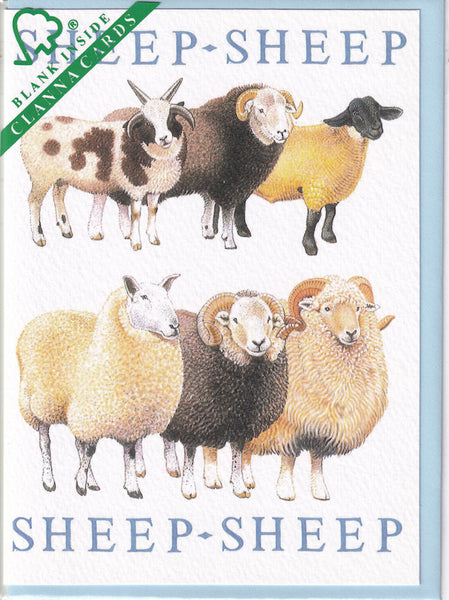 Sheep Greetings Card - Richard Partis For Clanna Cards