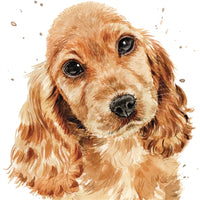 Copper The Cocker Spaniel Puppy Greetings Card - Louise Nisbet
